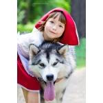 Питомник аляскинских маламутов предлагает щенков